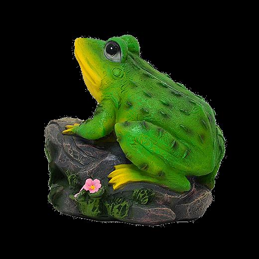 Лягушка на камне - 1