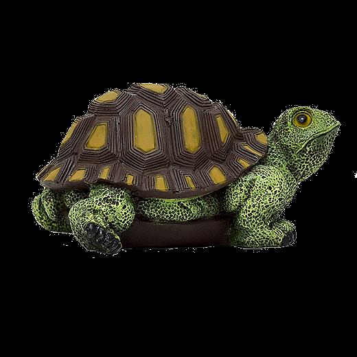 Черепаха - 1