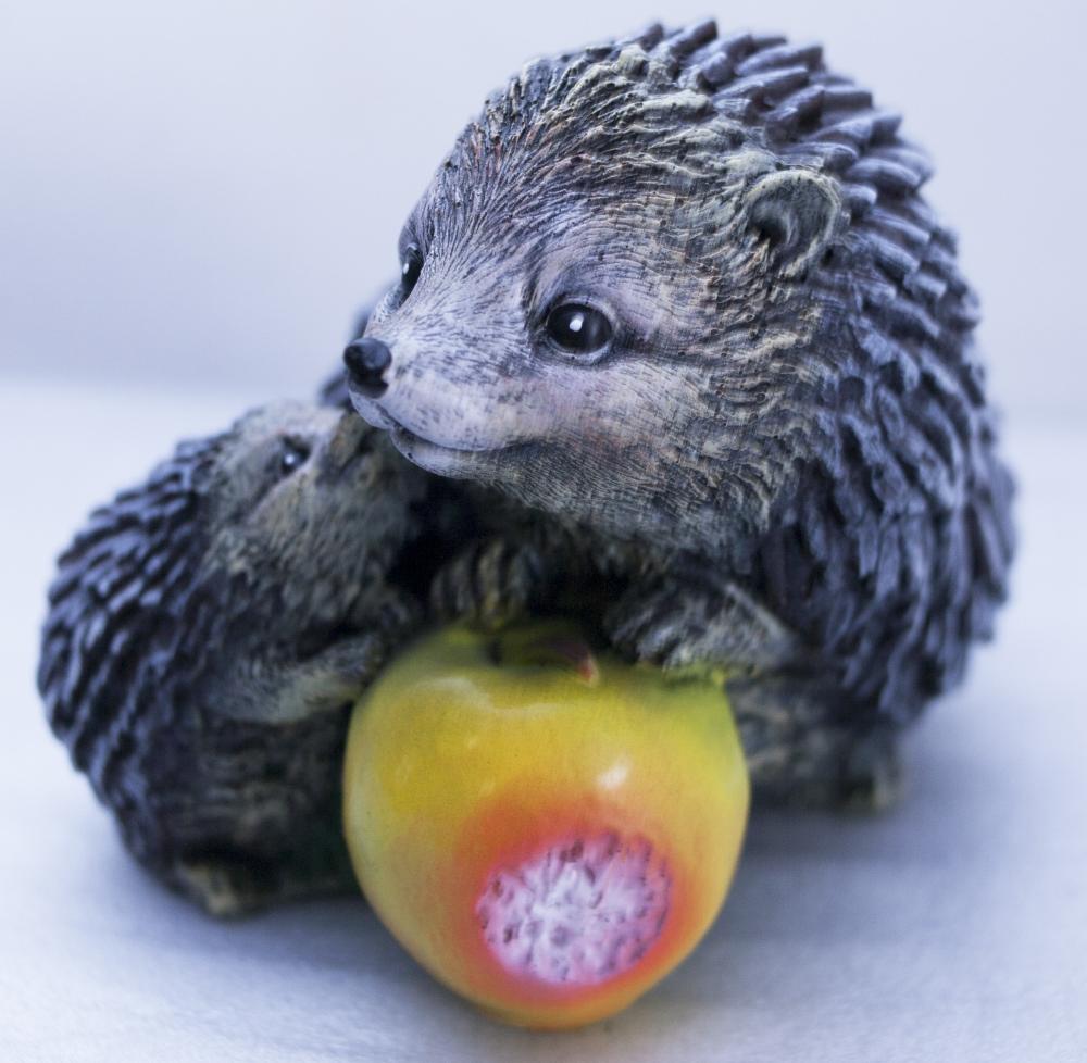 Ежики с яблоком - 1