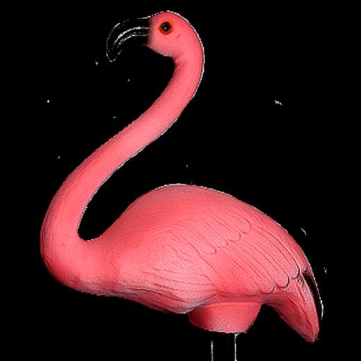 Фламинго (М)  - 1