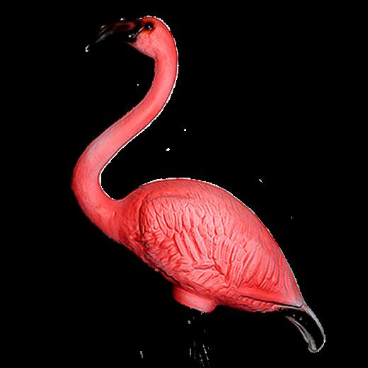 Фламинго  - 1