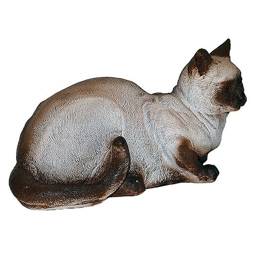Кошка сиамская - 1