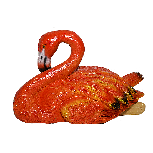 Фламинго сидячий - 1